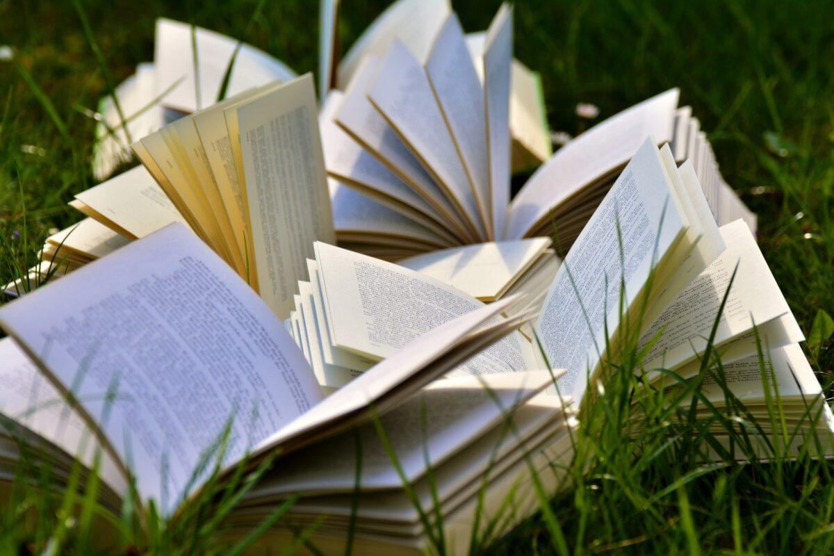 7 књига за 1000 динара